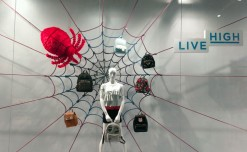 Lifestyle: Caught in the web!