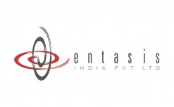 Entasis completes 20 years as retail solutions provider