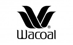 Japanese lingerie brand Wacoal to step up store presence in India