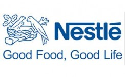 Nestle India's  Q1 net profit at Rs 279.1 crore