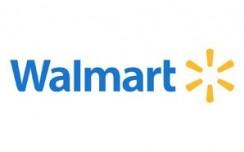 Wal-Mart India launches B2B e-commerce platform